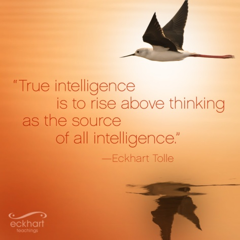 Tolle quote intelligence